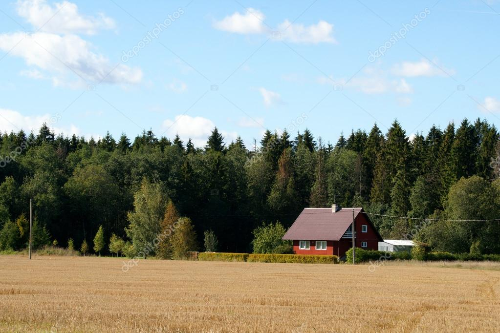 The modern house on a background of trees — Stockfoto #12882172
