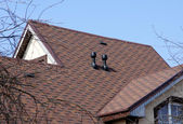 Brown roof — Stock Photo