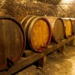 Wine Cellar — Stock Photo #12526008