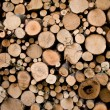 Fire wood texture, alternative power. — Stock Photo