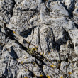 Foto Stock: Rocks texture for aquarium