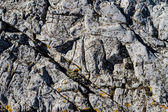 Rocks texture for aquarium — Stockfoto