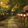 Japanese alley — Stock Photo #13202786