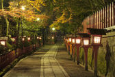 Japanese alley — Stock Photo