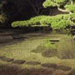 Night in zen garden — 图库照片