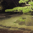 Night in zen garden — Stock fotografie