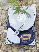 HDD on ground — Стоковое фото