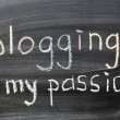 Blogging is my passion — Stock Photo