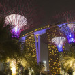 Gardens by the bay — Foto de Stock