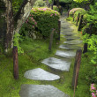 Wet pathway - Stock Photo