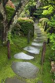 ıslak yol — Stok fotoğraf