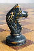 vintage chess knight — Foto de Stock