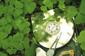 Hdd in grass — Stock Photo