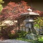 ogrod japoński — Zdjęcie stockowe #27552791