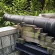 Fort Canning cannon — Stock Photo #27653383