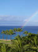 Rainbow Arching over Palm Trees and Beach in Maui Hawaii — Stock Photo