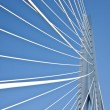 Details of the Erasmus Bridge — Stock Photo