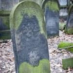 Jewish Cementary 3 — Stock Photo #42178679