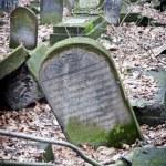 Jewish cementary 4 — Stock Photo #42178683