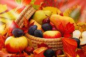 Basket of autumn fruits — Stock Photo