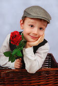 Elegant little boy with rosa — Stock Photo