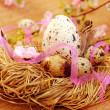 Foto Stock: Nest with quail eggs for easter