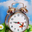 Retro alarm clock on the grass — Stock Photo