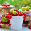 Stock Photo: Summer fruit preserves