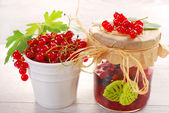 Red currant homemade preserve — Stock Photo
