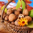 Basket with fresh walnuts — Stockfoto