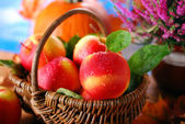 Apples with water drops in the basket — Stock Photo