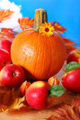 Pumpkin and apples on autumn table — Stock Photo