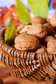 Basket with fresh walnuts — Stock Photo