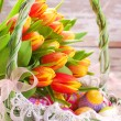Easter basket with eggs and fresh tulips — Stock Photo