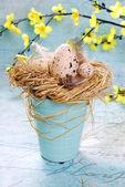 Dekoracje wielkanocne z jaj w gnieździe siana — Zdjęcie stockowe