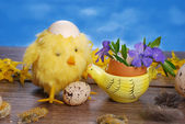 Easter decoration with chicken and eggs — Stock Photo
