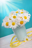 Bunch of camomile flowers — Stock Photo