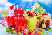 Fresh summer fruit compote — Stock Photo