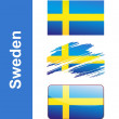 Flag Sweden — Stock Vector