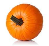 Pumpkin on white — Stockfoto