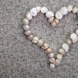 Sea shells Heart — Stock Photo
