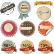 Vintage tags — Stock Vector #12450871