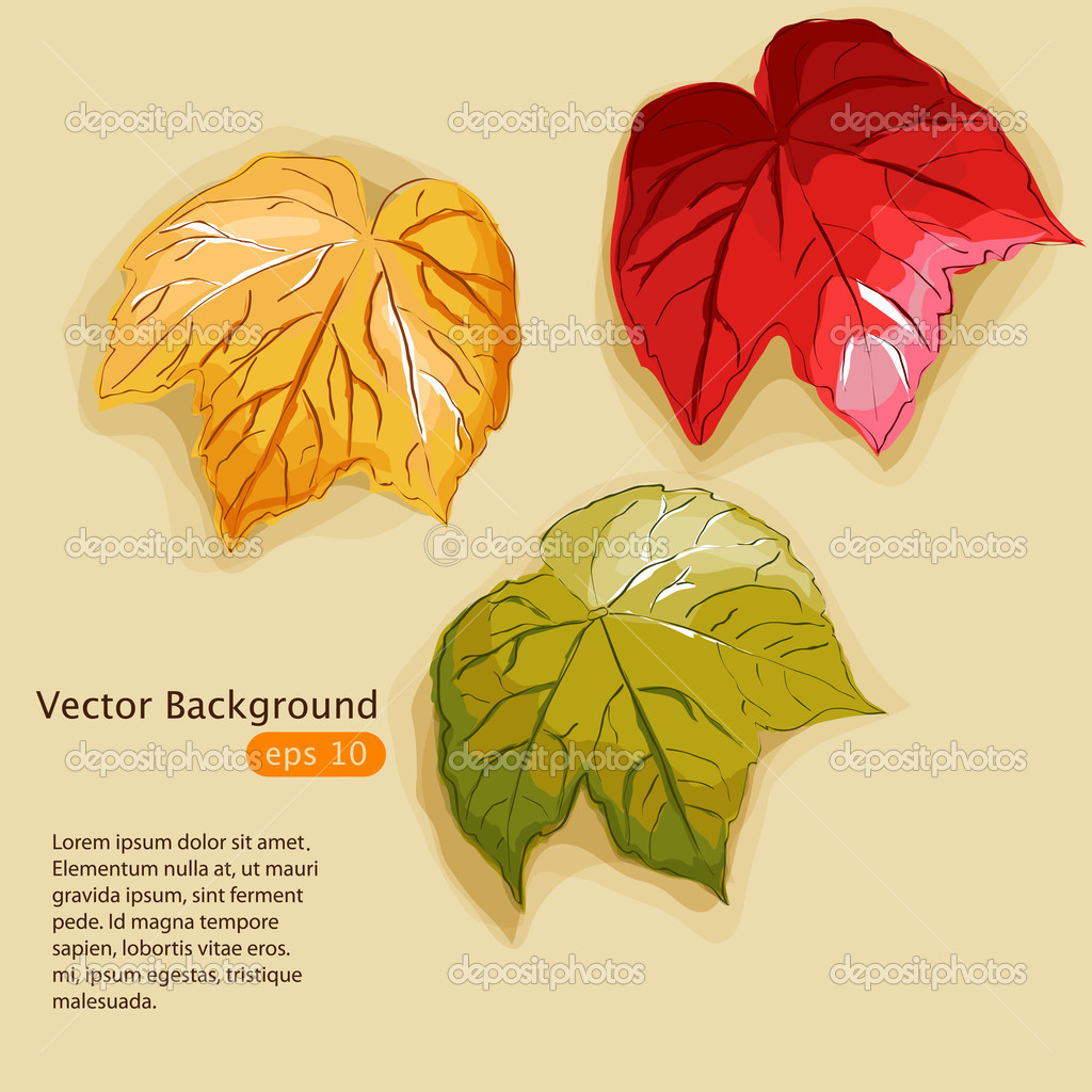 Vector illustration with multi coloured autumn leaves — Stock Vector #12450720