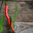 Royalty-Free Stock Photo: Chili pepper