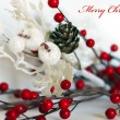 Xmas decoration — Stock Photo #17200177