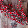Xmas decoration — Stock Photo #17200277
