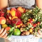 Autumn fruits — Stock Photo #33508047
