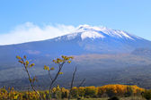 View on Etna — Stock Photo