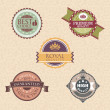 Vintage labels and badges — Stock Vector #13394529