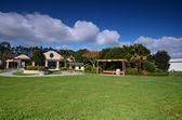 The area wineries Estate Winery Soljans. Landscape. Auckland. Ne — Stock Photo